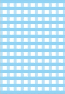 Blue Poppy Gingham - 5 sheets