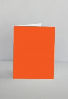 Persimmon notecards