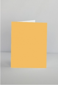 Squash notecards